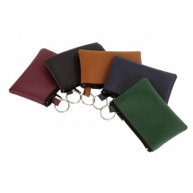 Keyholder, assorted colours
