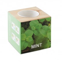 Kweekset, munt in houten pot MENTA - wood